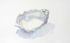 Coquille d'huître  - Aquarelle - 23 x 13 >>>  05-2003
