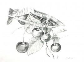 Les cerises - crayon - 29 x 21 >>> 1996