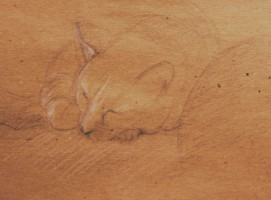 Chat endormi - Crayon et craie - 21 x 15 >>> 01-2001