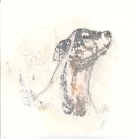 Le chien - Transfert - 19 x 19 >>> 2015